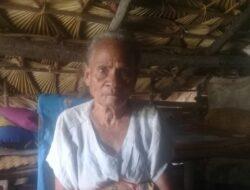 Kisah Nenek Elisabet di Rote Ndao, Tinggal di Gubuk Reot Tanpa Perhatian Pemerintah